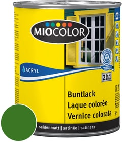 Acryl Vernice colorata satinata Verde foglio 750 ml Acryl Vernice colorata Miocolor 660553400000 Colore Verde foglio Contenuto 750.0 ml N. figura 1