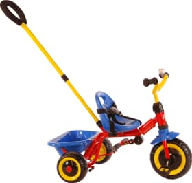 Tricycle DeLuxe