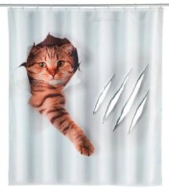 Duschvorhang Cute Cat WENKO 674009700000 Bild Nr. 1