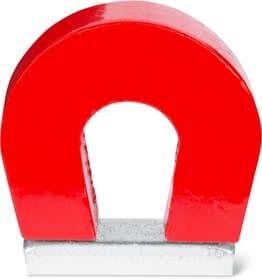 Hufeisenmagnet, 1 Stk. Magnete Do it + Garden 605133500000 Bild Nr. 1