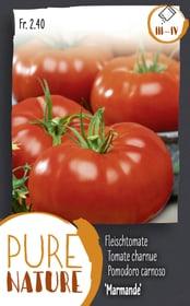 Tomate 'Marmande' Fleischtomate 0.25g Gemüsesamen Do it + Garden 287118300000 Bild Nr. 1