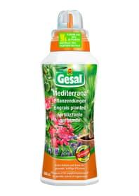 Mediterrana Pflanzendünger, 500 ml Flüssigdünger Compo Gesal 658229600000 Bild Nr. 1