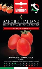 Tomate Diabolik F1 Sementi di verdura Blumen 650161700000 N. figura 1