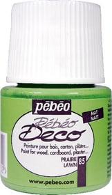 Pébéo Deco lawn 85 Pebeo 663513008500 Bild Nr. 1