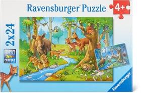 Animaux de forêt Puzzle Ravensburger 748976300000 Photo no. 1