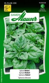 Spinat Nobel Gemüsesamen Samen Mauser 650115202000 Inhalt 25 g (ca. 2  m²) Bild Nr. 1