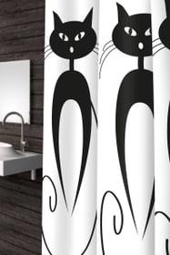 Tenda doccia Cats diaqua 675592700000 Taglio 180 x 180 N. figura 1