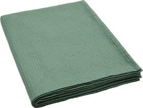 ELIANE Coperta 451627943360 Colore Verde Dimensioni L: 150.0 cm x A: 200.0 cm N. figura 1