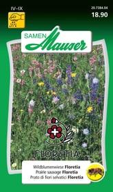 PRAIRIE SAUVAGE Semences de fleurs Samen Mauser 650182100000 Photo no. 1