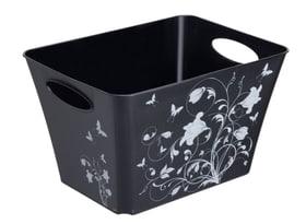 LIVING Box 24l, Plastica (PP) senza BPA, blanco con motivo Cestina Rotho 604057800000 N. figura 1