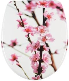 Nice Sakura WC-Sitz diaqua 675498300000 Bild Nr. 1