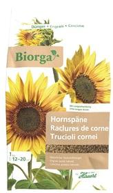 Biorga Raclures corne, 2.5 kg Engrais solide Hauert 658202100000 Photo no. 1