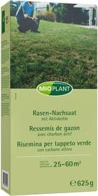 Rasen-Nachsaat, 25 - 60 m2 Rasensamen Mioplant 659289600000 Bild Nr. 1