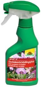 Spruzit AF OrchideenSchädlingsfrei, 250ml Neudorff 658422900000 Bild Nr. 1