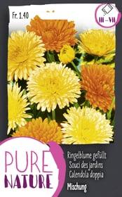 Souci des jardins double, en mélange 1g Semences de fleurs Do it + Garden 287300700000 Photo no. 1