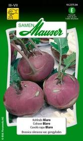 Colrave Blaro Semences de legumes Samen Mauser 650111402000 Contenu 1 g (env. 80 - 100 plantes ou 5 - 6 m²) Photo no. 1