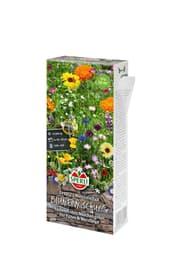 Blumenmischung  Naschvielfalt Blumensamen Sperli 650199200000 Bild Nr. 1