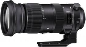 60-600mm f / 4.5-6.3 DG OS HSM Sports Nikon Objektiv Sigma 785300145188 Bild Nr. 1