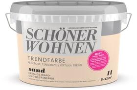 Pittura trend OPACA 1L Sand Sand 1 l Schöner Wohnen 660962800000 Colore Sand Contenuto 1.0 l N. figura 1