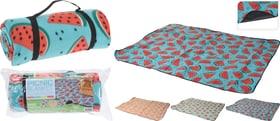 Summer Picknickdecke Do it + Garden 657789600000 Bild Nr. 1