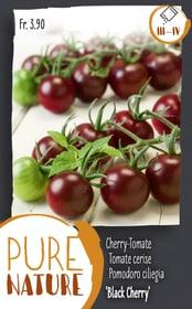 Tomate 'Black Cherry' 0.1g Gemüsesamen Do it + Garden 287118000000 Bild Nr. 1