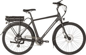 Classic E-Bike Crosswave 464838700000 Bild-Nr. 1