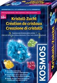 Créatde cristaux Créer soi-même des cristaux fascinants KOSMOS 748618800000 Photo no. 1