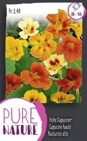 Nasturzio alto, semplice, miscuglio 5g Sementi di fiori Do it + Garden 287304300000 N. figura 1