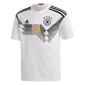 DFB Home Jersey Youth