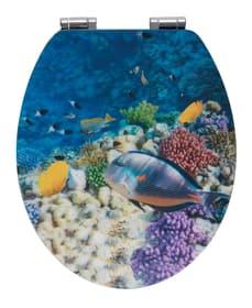 3D WC-Sitz Fish WENKO 674045000000 Bild Nr. 1