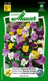Hornveilchen Rapsody Mischung Blumensamen Samen Mauser 650108001000 Inhalt 50 Korn (ca. 30 Pflanzen oder 1.5 m²) Bild Nr. 1