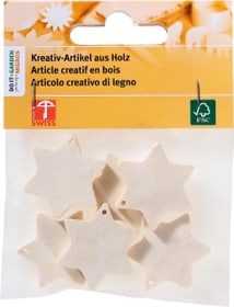 Stern klein FSC® 6Stk. Legna Creativa 664016300000 Bild Nr. 1