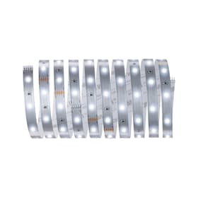 MaxLED 250 Basisset 3 m, Tageslicht Light-Strip Paulmann 615139200000 Bild Nr. 1