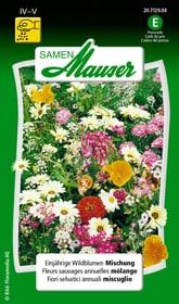 Einjährige Wildblumen Mischung Blumensamen Samen Mauser 650108201000 Inhalt 2.5 g (ca. 150 Pflanzen oder 4 m²) Bild Nr. 1