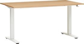 FLEXCUBE ECCO Table réglable en hauteur 401905000000 Dimensions L: 140.0 cm x P: 80.0 cm x H: 73.0 cm Couleur Chêne Photo no. 1