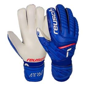 Attrakt SG Finger Support Jr. Kinder-Fussball-Torwarthandschuhe Reusch 461969706040 Grösse 6 Farbe blau Bild-Nr. 1