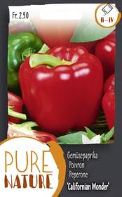 Gemüsepaprika 'Californian Wonder' 0.4g Gemüsesamen Do it + Garden 287117900000 Bild Nr. 1