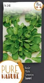 Nüssler 'Louviers' Feldsalat 1Saatband Gemüsesamen Do it + Garden 287107000000 Bild Nr. 1