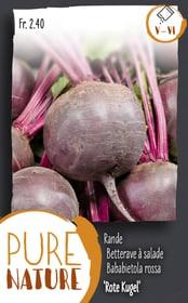Rande 'Rote Kugel' Rote Rübe 5g Gemüsesamen Do it + Garden 287115400000 Bild Nr. 1
