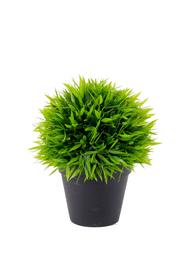 Bambuskugel Kunstpflanze Do it + Garden 659326900000 Bild Nr. 1