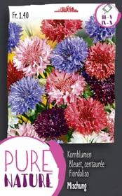 Kornblumen gefüllt, gemischt 1g Blumensamen Do it + Garden 287302400000 Bild Nr. 1