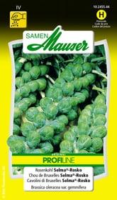 Rosenkohl Selma®-Rosko Gemüsesamen Samen Mauser 650114001000 Inhalt 0.3 g (ca. 50 Pflanzen oder 10 - 12 m² ) Bild Nr. 1