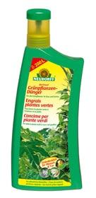 Grünpflanzendünger, 1 l Flüssigdünger Neudorff 658236700000 Bild Nr. 1