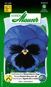 Stiefmütterchen Riesen blau m. Auge Blumensamen Samen Mauser 650108003000 Inhalt 0.5 g (ca. 100  Pflanzen oder 3 - 4 m² ) Bild Nr. 1