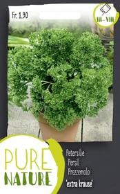 Petersilie 'extra krause' 5g Kräutersamen Do it + Garden 287121200000 Bild Nr. 1