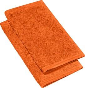 SMART FEELING Lavettes à 2 piéces 450873020134 Couleur Orange Dimensions L: 30.0 cm x H: 30.0 cm Photo no. 1