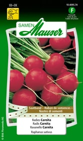 Saatband Radies Carnita Gemüsesamen Samen Mauser 650114404000 Inhalt 3 x 2.5 m Saatband für 1 - 1.5 m² Bild Nr. 1