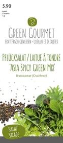 Pflücksalat 'Asia Spicy Green Mix' 5g Gourmetsamen Do it + Garden 287103900000 Bild Nr. 1