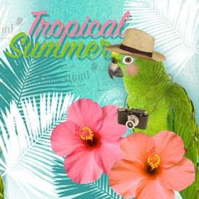 Avantgarde Serviette Saison, 20 Stk. 33x33 cm, Tropical Summer Feldner + Partner 665744600000 Bild Nr. 1