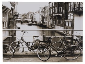 BICYCLE Tableau canvas 431815760853 Dimensions L: 60.0 cm x H: 80.0 cm Photo no. 1